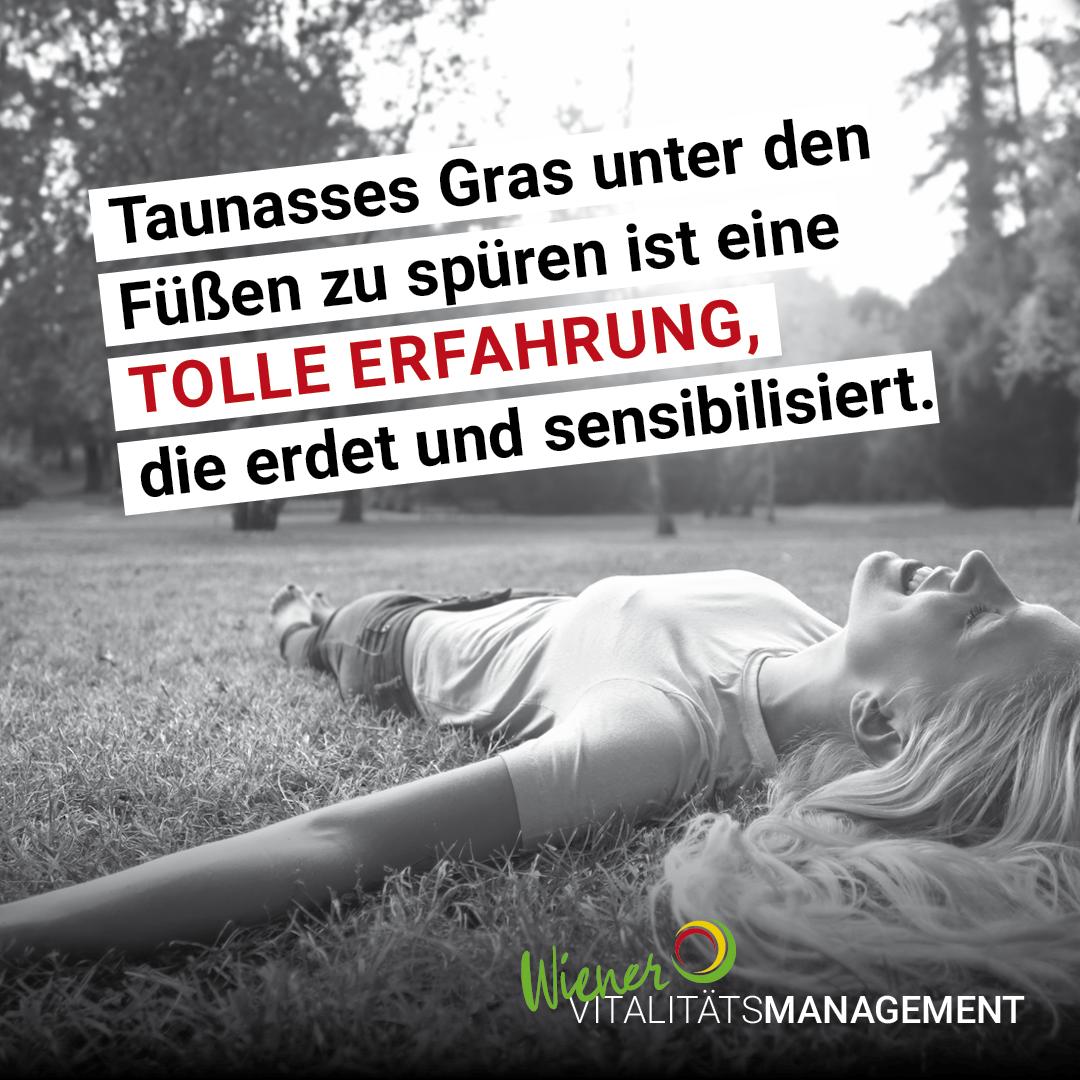 Zellermayer_INSTA_Staffel_V05_12